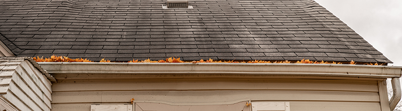 3 Things to Look for As You Clean Out Your Gutters This Fall